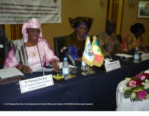 1. Dr Fatimata Dia Sow, Commissioner for Social Affairs and Gender of ECOWAS delivering her sqsdsqdsqpeech