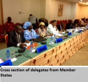 Cross section of delegates from Member States